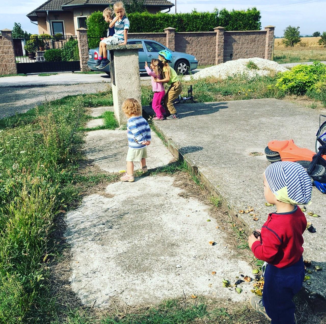 Domáce vzdelávanie v praxi - telesná výchova